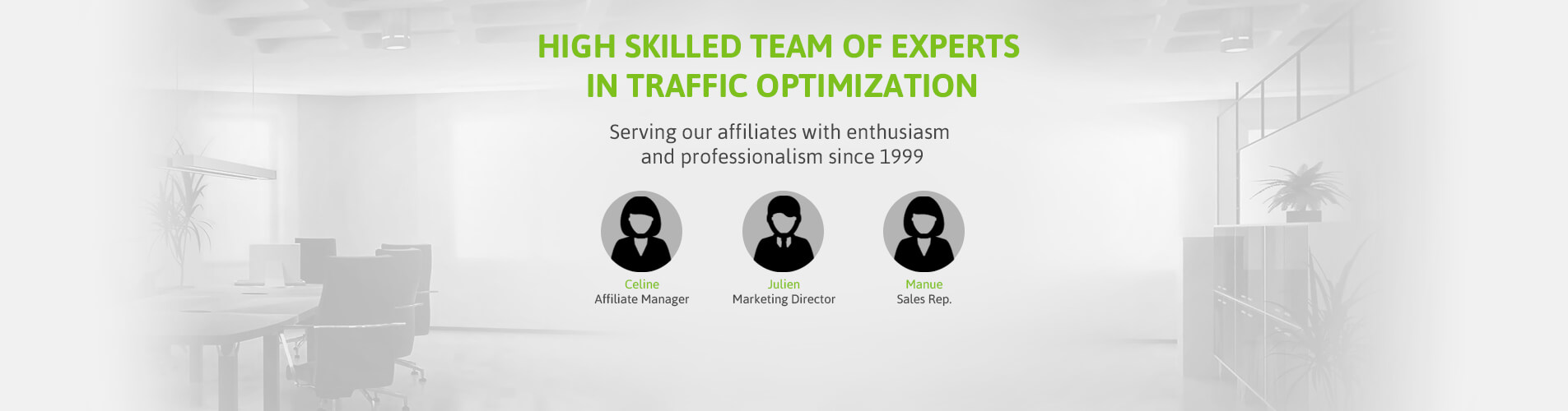 High skilled team of experts in traffic optimisation